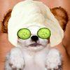 Аватар для zVersus