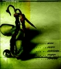 Аватар для dragon99
